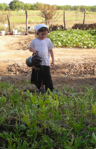 Sarah Bunker watering the garden